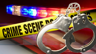 Woman accused of making several false reports