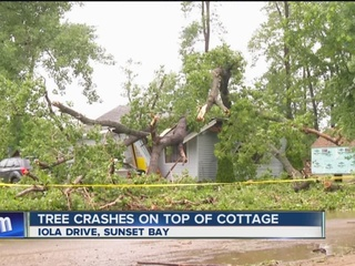 Family of six safe after tree crushes house