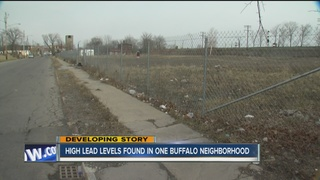 High lead levels at homes near old factory site