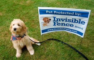 Invisible Fence: Keep pets safe and happy