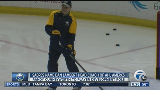 Sabres make coaching changes on the farm