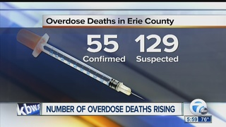 Opioid deaths taking toll on WNY