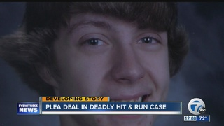 Plea deal in deadly hit and run crash
