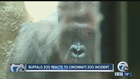 Buffalo Zoo reacts to Cincinnati incident
