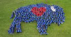 Human BuffaLove photo celebrates revitalization