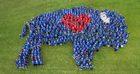 Human BuffaLove photo celebrates revitalization