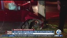 Bark ripped off after SUV hits tree with force