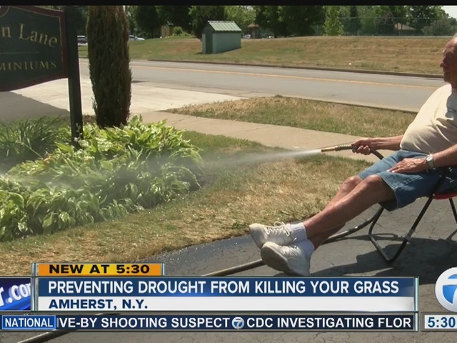 Keeping your grass green during the drought
