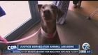 Justice served for animal abusers