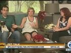 Pet Talk with Heleny Sweeney, DVM