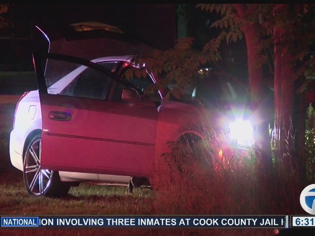 Buffalo police investigate overnight car crash into tree