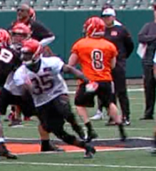 Licata battling for roster spot with Bengals