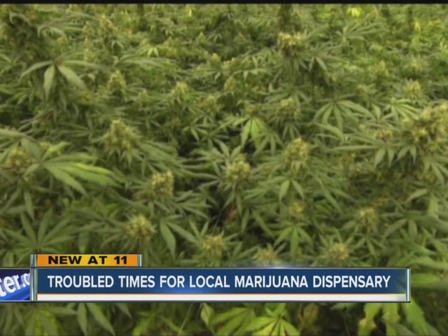 Williamsville medical marijuana dispensary facing financial troubles