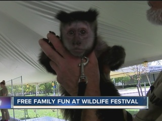31st Wildlife Festival provides family fun