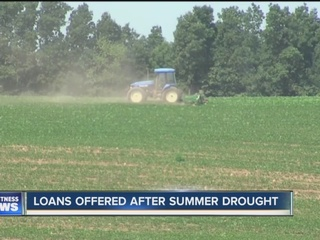 Help offered to local businesses after drought