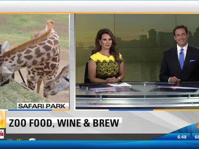 Reporter has funny encounter with giraffe
