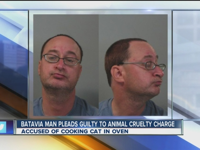 Man who killed his cat in the oven pleads guilty