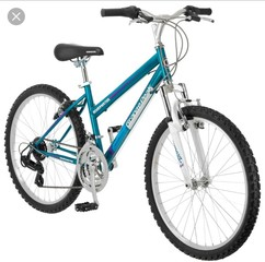 Bicycles stolen from Town of Tonawanda teens