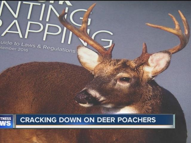 Cracking down on deer poachers