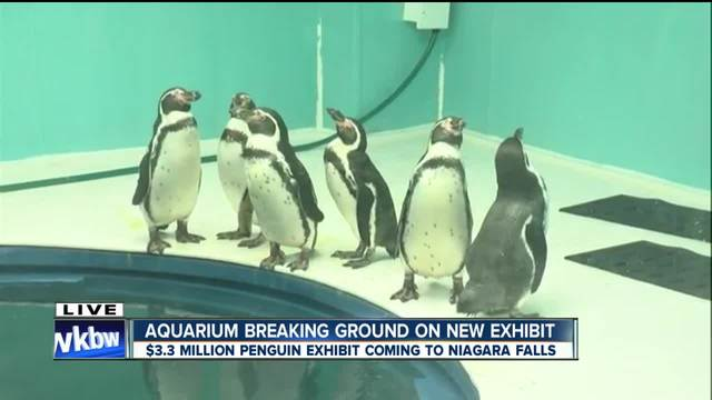 Aquarium of Niagara to expand with -3-3 million exhibit