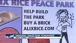 Alix Rice skate park to be built this spring