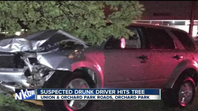 Woman strikes tree with SUV arrested for DWI