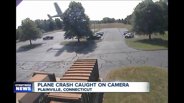 Must-see: Man survives plane crash into a tree