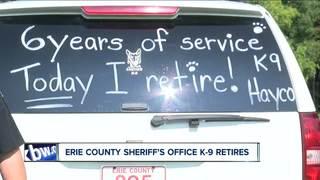 Once a police dog, always a police dog