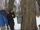 How much maple syrup did farmers produce in '18?