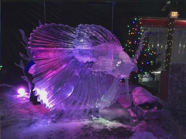 ice to be delivered for ice carving competition wkbw com buffalo ny