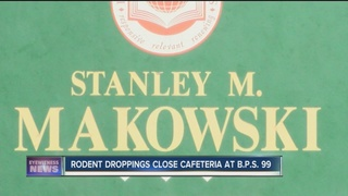 Rodent droppings close Buffalo school cafeteria