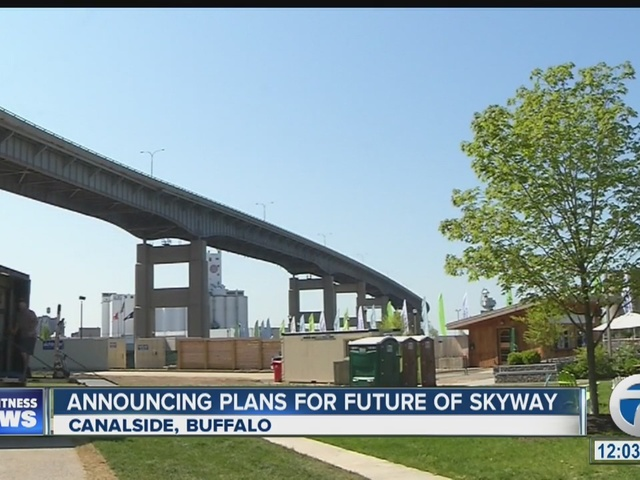 higgins calls for review of skyway removal