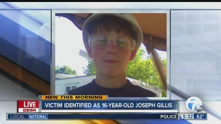 ATV crash kills 16-year-old Niagara County boy