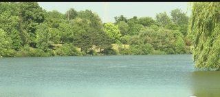 Harmful algae bloom confirmed in Hoyt Lake