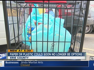 Push to ban plastic bags in Erie County