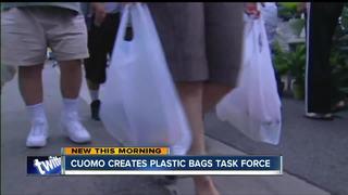 Wegmans opposes plastic bag ban proposal