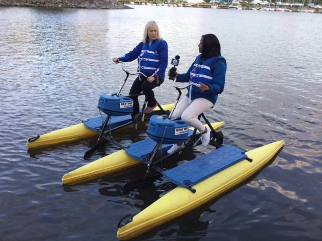 water bikes of buffalo grows in business and popularity