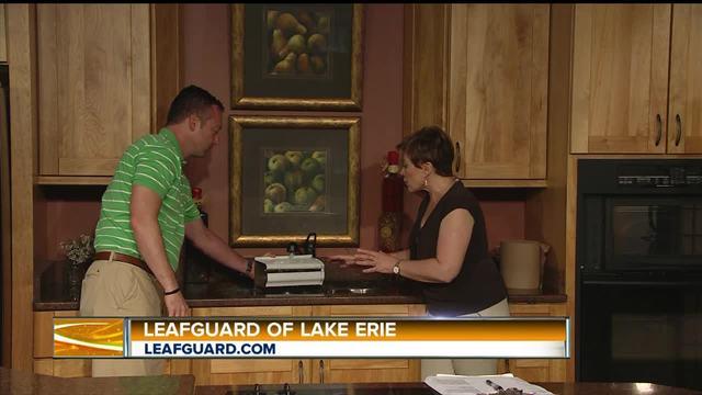 Englert Leafguard Of Lake Erie Wkbw Com Buffalo Ny
