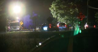 Man hit, killed in Newfane overnight