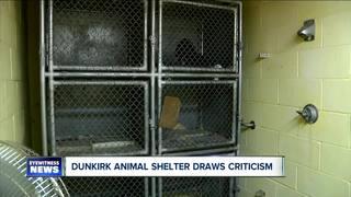 Bathroom turned animal shelter shocks neighbors