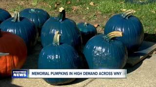Memorial pumpkins in high demand across WNY