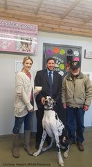 Veteran donates $50K to Niagara SPCA