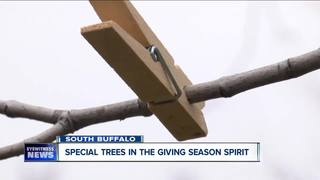 'Giving trees' decorated with clothes for needy