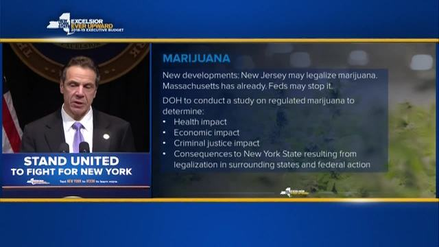 New York to launch study into legalizing marijuana