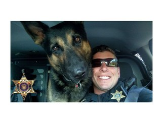 NCSO mourns the loss of K9 officer