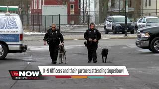 Local Cops & K-9 partners headed to the big game