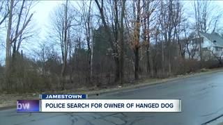 Police: Arrest Pending in Jamestown dog hanging