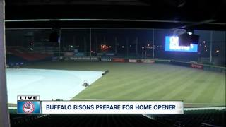 Buffalo Bisons 2018: What you need to know