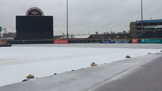 Bisons Monday game postponed due to rain