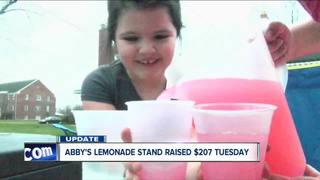 'Pay it forward' lemonade stand earns $200